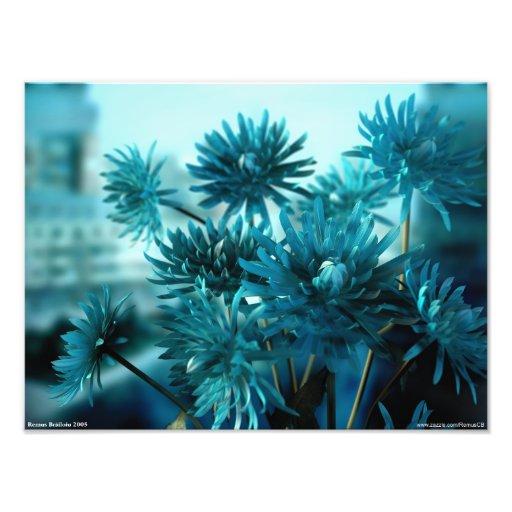 Blue View Photo Art
