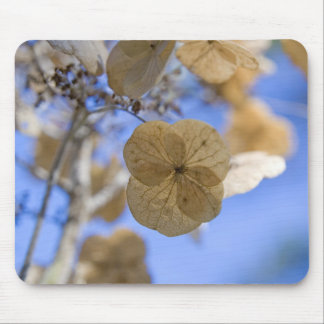 Blue Wafer Flower Mouse Pad