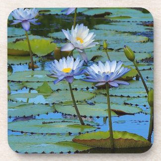 Blue water lilies drinks coasters