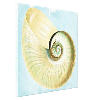Blue Watercolor Sea Shell Canvas Print