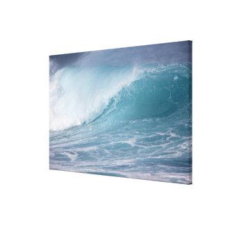 Blue wave crashing, Maui, Hawaii, USA 2 Canvas Print