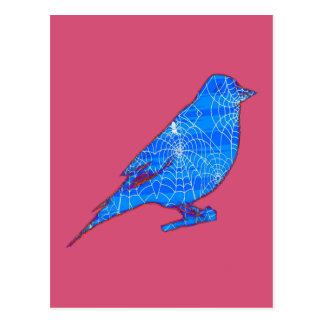 Blue Web Bird Postcards