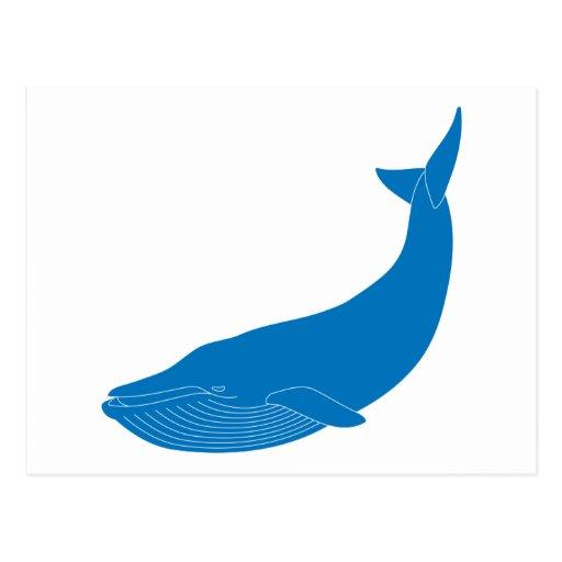 Blue Whale Marine Mammals Wildlife Oceans Post Card