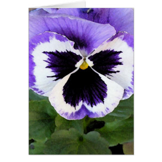Blue, White and Purple Pansy Greeting Card