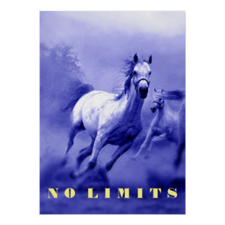 Blue Wild Horses Motivational No Limits Limitation Poster
