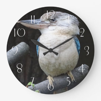 Blue-winged kookaburra large clock
