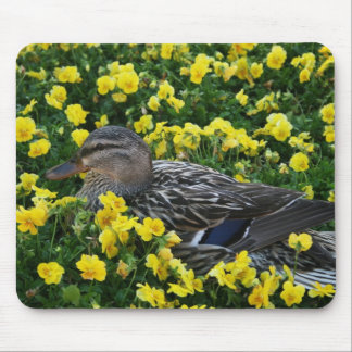 Blue Winged Teal Duck and Yellow Flowers Mouse Pad