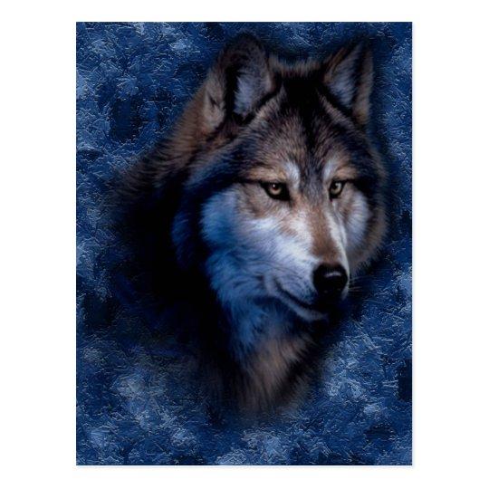 Blue Wolf Postcard