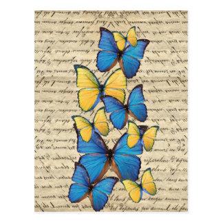 Blue & yellow butterrflies postcard
