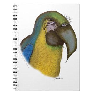 blue yellow macaw, tony fernandes notebooks