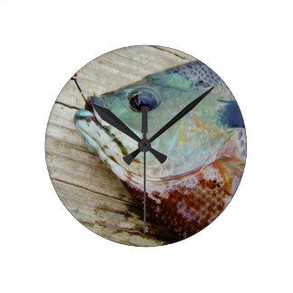 blue yellow purple teal, Bluegill fish on dock Round Wallclock