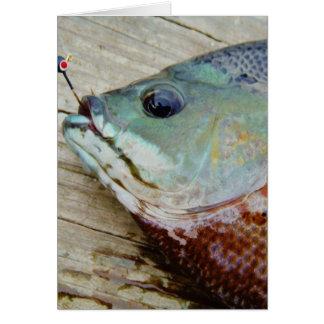 blue yellow purple teal, Bluegill fish on dock Greeting Card