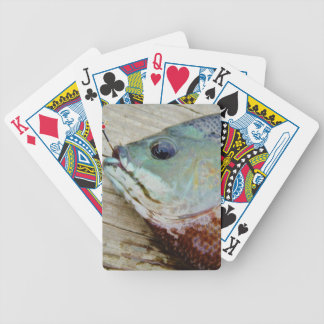 blue yellow purple teal Bluegill fish on dock Bicycle Card Decks