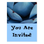 BLUE You Are Invited Postcard