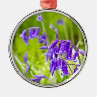 Bluebell 1.jpg christmas ornament