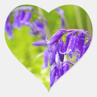 Bluebell 1.jpg heart sticker