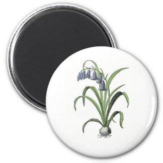 Bluebell 6 Cm Round Magnet