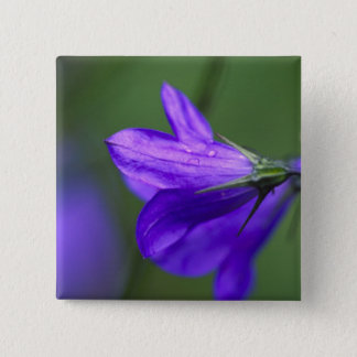 Bluebell flower in Independence Pass in 15 Cm Square Badge