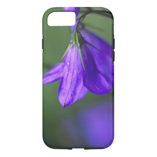 Bluebell flower in Independence Pass in iPhone 8/7 Case