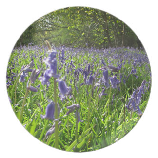Bluebell Meadow Party Plates