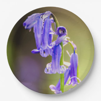 Bluebell plates 9 inch paper plate