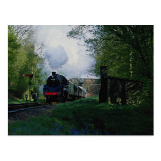Bluebell Railway, West Sussex, U.K. Postcard