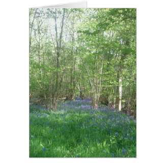 Bluebell trail through Foxley Wood, Norfolk Card