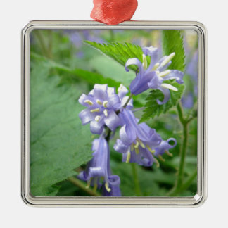 Bluebell - Trottiscliffe Country Park Silver-Colored Square Decoration