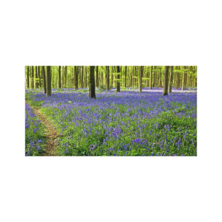 Bluebell wood - Canvas