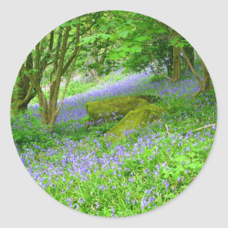 Bluebell Wood Classic Round Sticker