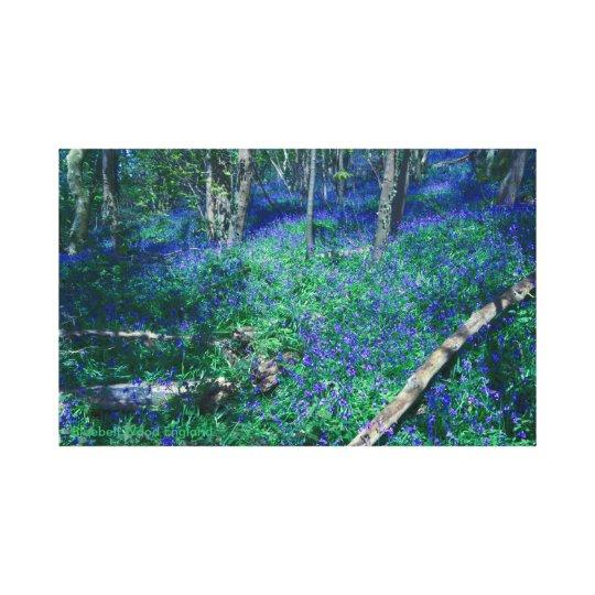 Bluebell Wood England Canvas Print
