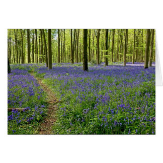 Bluebell wood - Greeting card