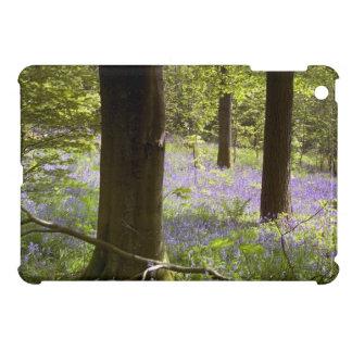 Bluebell Wood iPad Mini Cover