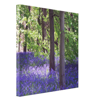 Bluebell Wood Nature Picture Stretched Canvas Prin