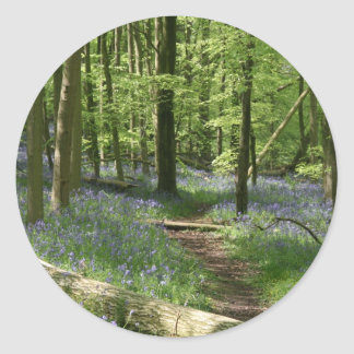 Bluebell woods classic round sticker