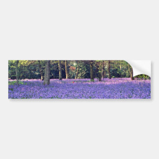 Bluebell Woods, England  flowers Bumper Sticker