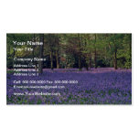 Bluebell Woods, England  flowers Double-Sided Standard Business Cards (Pack Of 100)