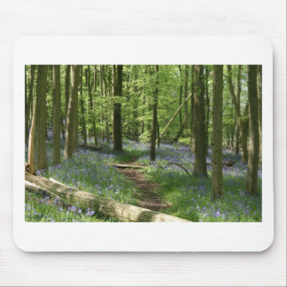 Bluebell woods mouse mats