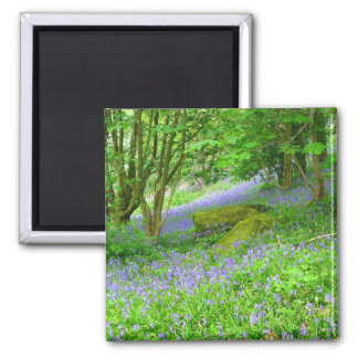Bluebell Woods Square Magnet
