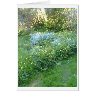 Bluebells and Buttercups Greetings Card