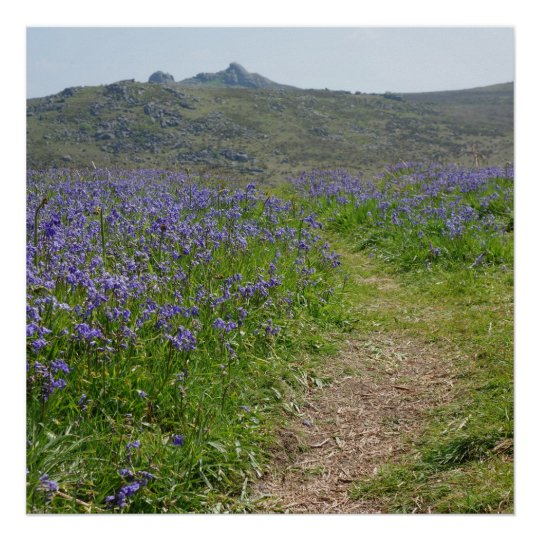 Bluebells and Hay Tor Poster