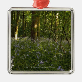 Bluebells In A Forest Silver-Colored Square Decoration