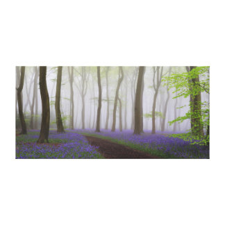 Bluebells in the Mist Canvas