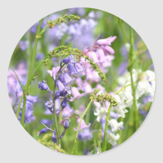 Bluebells meadow round stickers