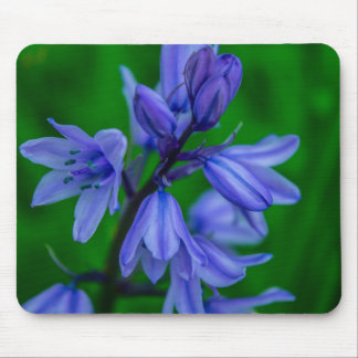 Bluebells Mousemat Mouse Pad