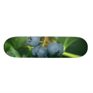 Blueberries 21.6 Cm Skateboard Deck
