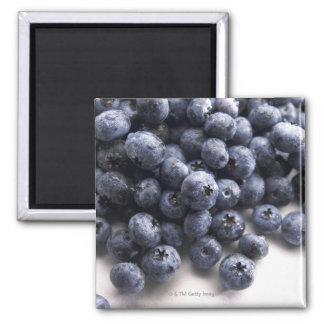 Blueberries 2 magnet