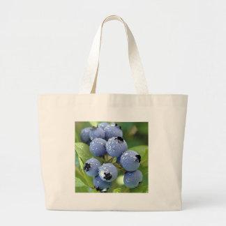 Blueberries A Summertime Fruit Bag