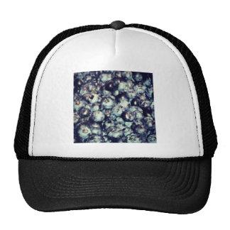Blueberries Cap