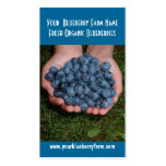 Blueberries for you to eat! pack of standard business cards
